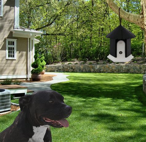 Oxgord Ultrasonic Dog Anti Bark Control Bird House Slash Pets