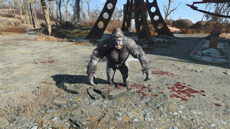 nuevas imagenes fallout 4 expand dong dogmeat is gorilla fallout 4 mod cheat fo4