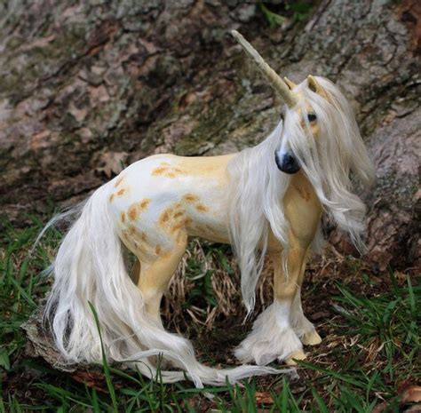 25 best ideas about unicorns are real on pinterest real unicorn are fairies real and real