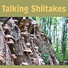 30 best edible mushrooms, ontario images on pinterest