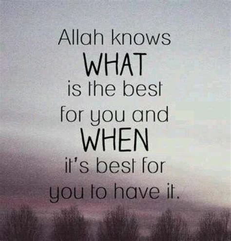 300 beautiful islamic quotes about life with images 2018