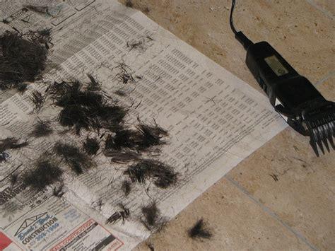 haircut coupons dublin ca lindsay lohan design supercuts hairstyles