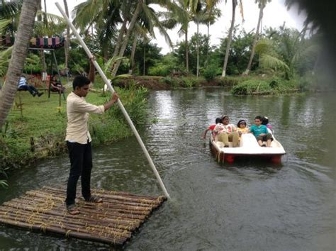 pedal boat price in kerala uninhabited island picture of mangrove island village