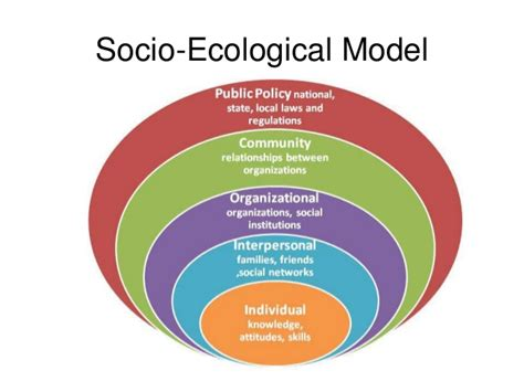 emergence of communication in socio biological networks computational social sciences books ecological model rap health behavior theory socio ecolo
