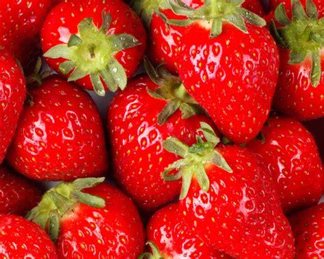 lemon yogurt muffins with fresh strawberry sauce