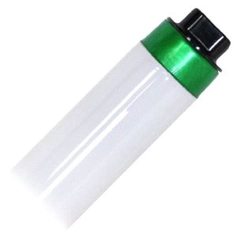 8 fluorescent light bulbs fluorescent lighting 8 fluorescent light bulbs