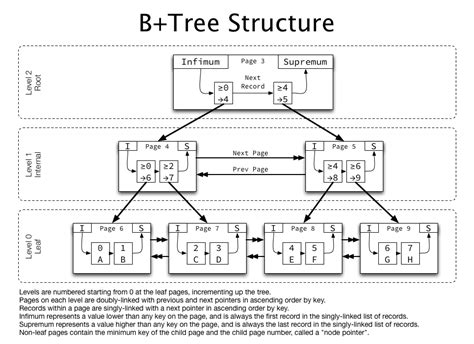 structure tree diagram b tree index structures in innodb cole