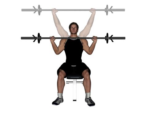 seated barbell press barbell seated shoulder press images