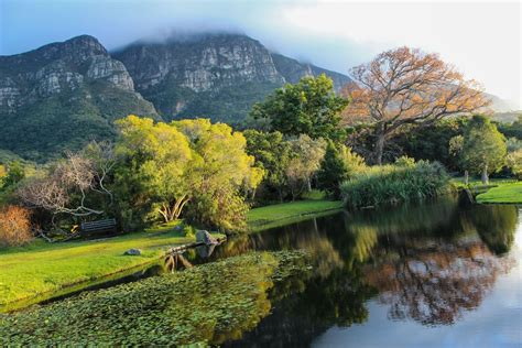 Kirstenbosch National Botanical Gardens The Most Beautiful Gardens In The World Pre Tend Be Curious