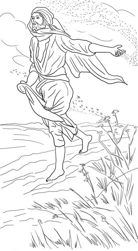 Drawing Parable Of The Sower Coloring Page : Color Luna