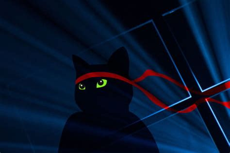 windows 10 wallpaper ninja cat microsoft celebrates windows 10 anniversary update with