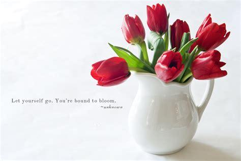 quotes  tulips quotesgram