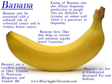 Oh Banana live knowledge oh bananas