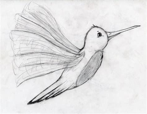 simple hummingbird drawing www imgkid com the image