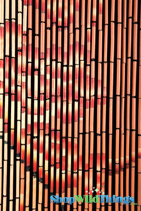 painted bamboo curtains bamboo painted beaded curtain with bamboo trees on orange