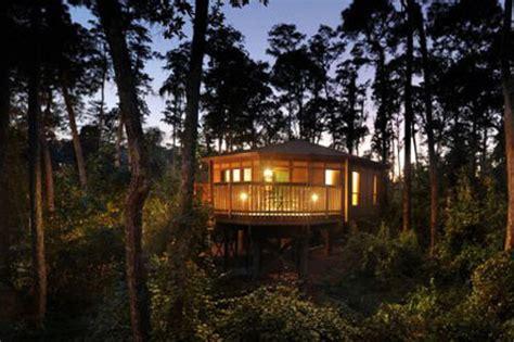 tree house site plan awesome disney saratoga springs treehouse saratoga springs disney treehouse villa disney world