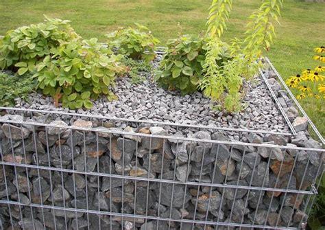 bilder gabionen bepflanzte gabionen
