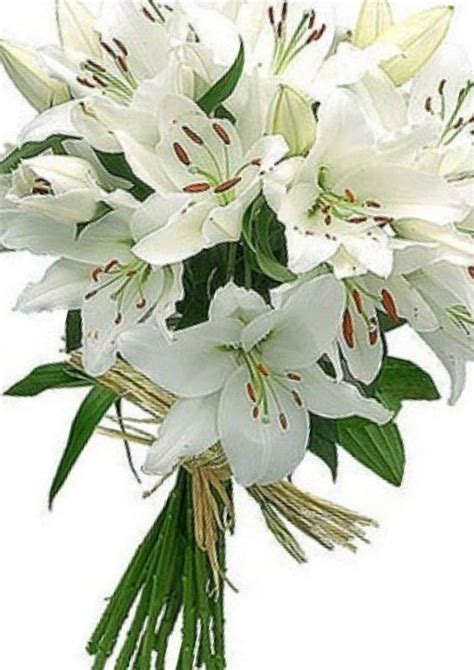 Wedding Bouquet Of The Valley by Bridal Bouquet Of Lilies