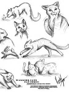 warrior cats fancomic sketches by spirittigar on deviantart