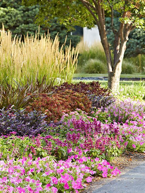 Purple Flower Garden Best Purple Flowers For Your Garden Better Homes And Gardens