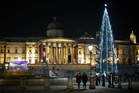 tree trafalgar square kmhouseindia tree in trafalgar square