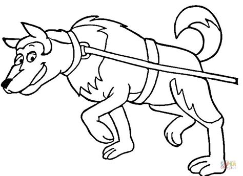 sledding coloring page dog sledding down hill sled dog coloring pages to print page mural tsb running