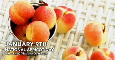 apricots celebrate national apricot day every day with 40 sweet fruity recipes books january 9th national apricot day list of national days