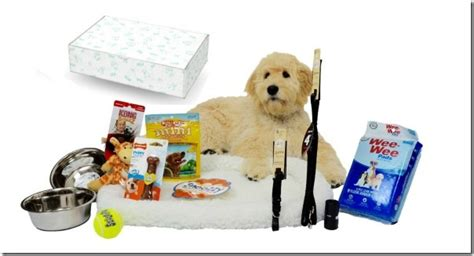 new puppy kit puppy starter kits for your new puppy callista s ramblings