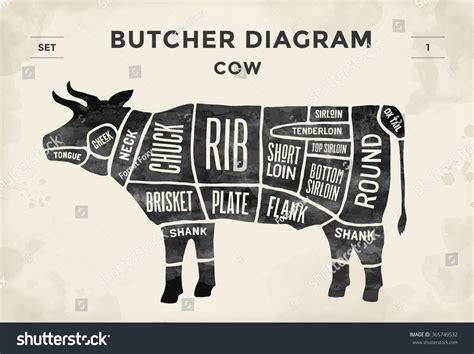 butcher diagram butcher diagram 28 images a4 butcher print butcher