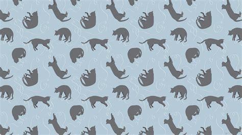 kitten pattern background cat background pattern tumblr blue 2560x1440 cats litle pups
