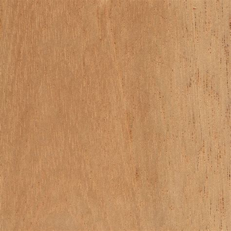 cedar wood  woodworking