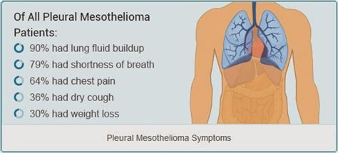 Pleural Mesothelioma Stages - your doctor guide