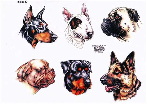 tattoo designs animals designs and e books animal design set 7