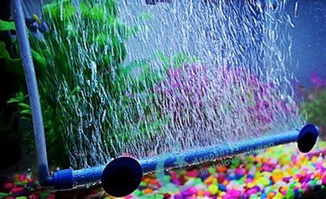 membuat filter aquarium dengan aerator aquarium aeration tube aquarium fish tank oxygen tube fish