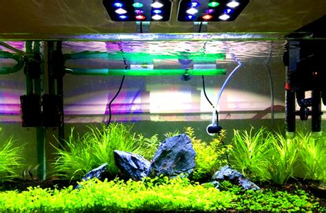 Lu Led Aquarium Mini Micmol Aqua Mini Freshwater