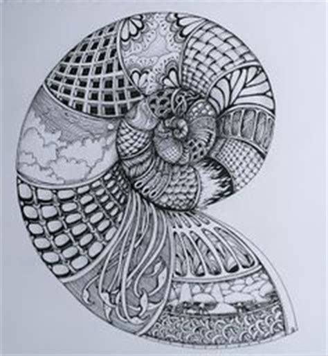 doodle snails meaning 1000 images about fossils and bones on