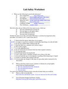 Lab Safety Essay by Worksheet Science Lab Safety Worksheet Fiercebad Worksheet And Essay Site For Children Student