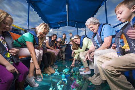 ripley s glass bottom boat ripley s aquarium of the smokies glass bottom boat adventure