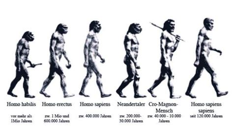 the rise of sapiens the evolution of modern thinking books why if is descended from apes do we still apes