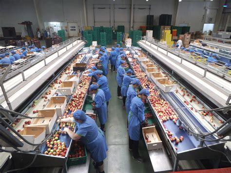 la gran fbrica de agricultura de la vega not 237 cias sobre productos y medios de subsistenca en la comarca de la