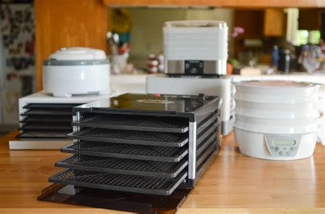 kitchen living food dehydrator 28 images food