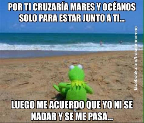 imagenes rana rene vacaciones los mejores memes de la rana ren 233 para compartir en las