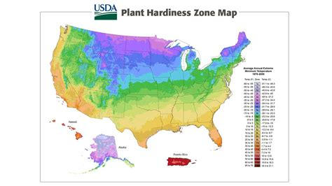 fruit zone map what is your usda plant hardiness zone organic