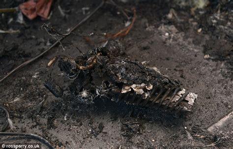 Hair Dryer Terbakar duh kamar remaja ini terbakar karena hair extension