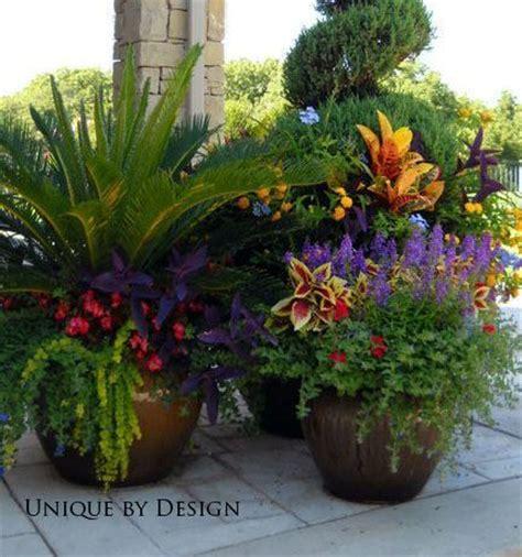 tropical planter ideas