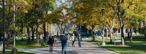 Search For Wayne State Undergraduate Admissions Wayne State