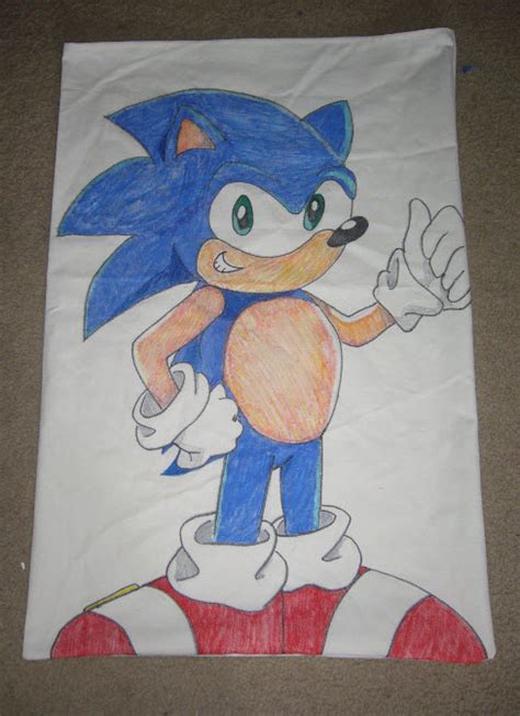 sonic pillow 47 sonic pillow sonic costume