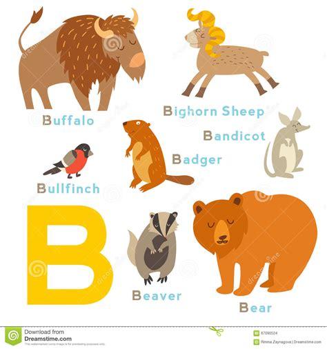 Imagenes De Animales Por La Letra B | animales de la letra de b fijados alfabeto ingl 233 s