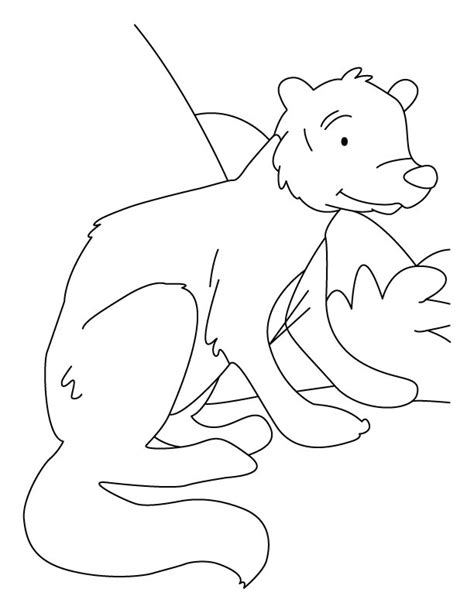 printable version of rikki tikki tavi white tailed mongoose coloring pages download free white