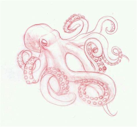 pinterest tattoo octopus octopuses drawing tattoos pinterest octopus drawing
